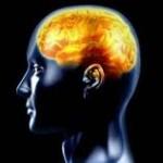 Hábitos para Desarrollar tu Mente